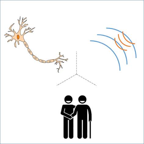 image illustrating neural pathways